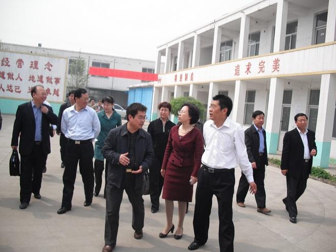 周广海总经理(左一)、鲁军副总经理(右一)陪同张妹之副市长(中)在厂区实地考察